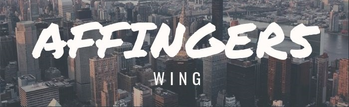 AFFINGER5(アフィンガー5)実用的10特典付きレビュー!