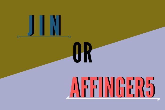 WordPressテーマ『JIN』と『AFFINGER5』を徹底比較した結果は?