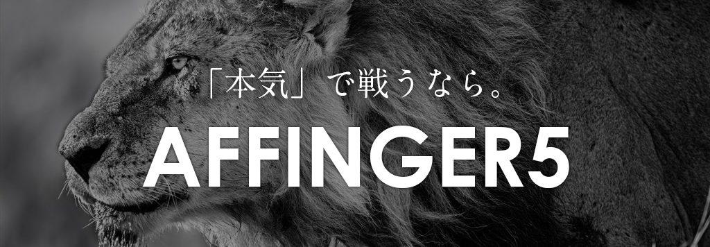AFFINGER5 WING
