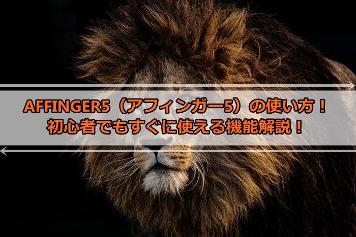 AFFINGER5(アフィンガー5)の使い方!初心者でもすぐに使える機能解説!