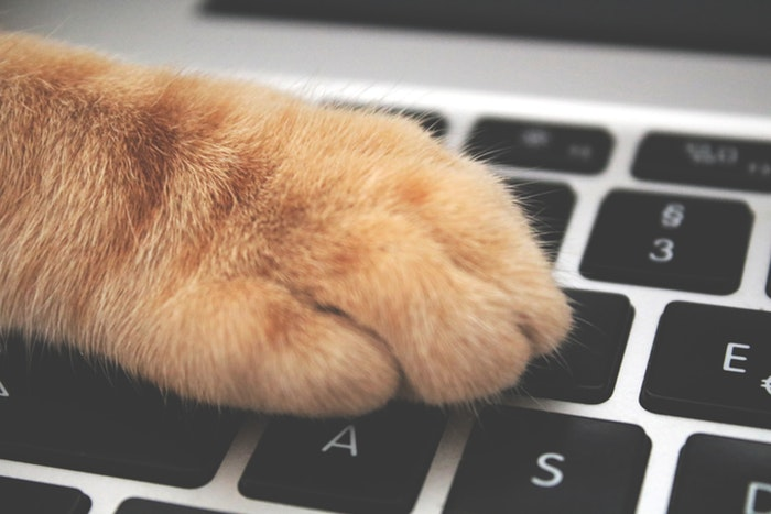 ELECOMのMacBook Pro用のキーボードカバーを買ったら大失敗だった話