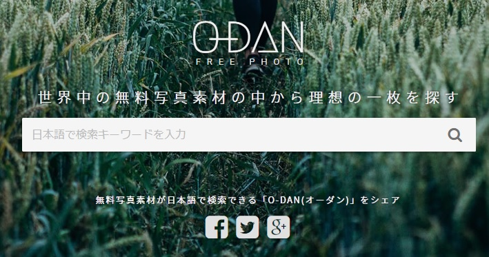 odan_top