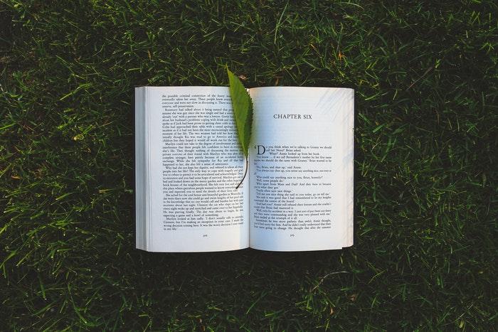 アフィリエイト初心者が読むべき本は5冊!【必読の理由も合わせて解説】